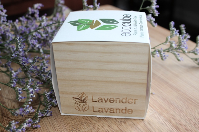Lavender Ecocube from Indigo. $10